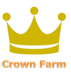 Click here to show Eton Town Council's statement on Crown Farm